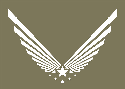 Army symbol, military symbol or emblem. Eagle wing with star on vector label.
