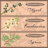 Aromatherapy set collection.