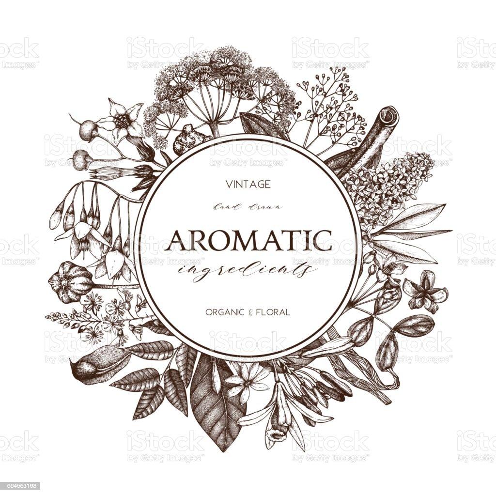 aromatic_card_3 vector art illustration