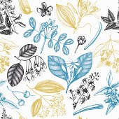 Vector background with hand drawn Perfumery and cosmetics ingredients illustration. Aromatic and medicinal plant seamless pattern.