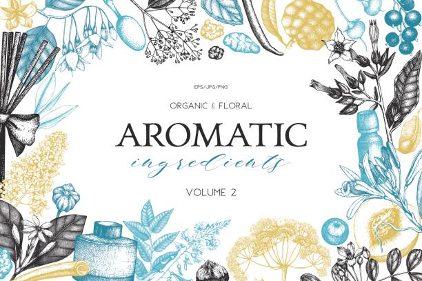 aromatic_vol.2_pr - alternative medizin stock-grafiken, -clipart, -cartoons und -symbole