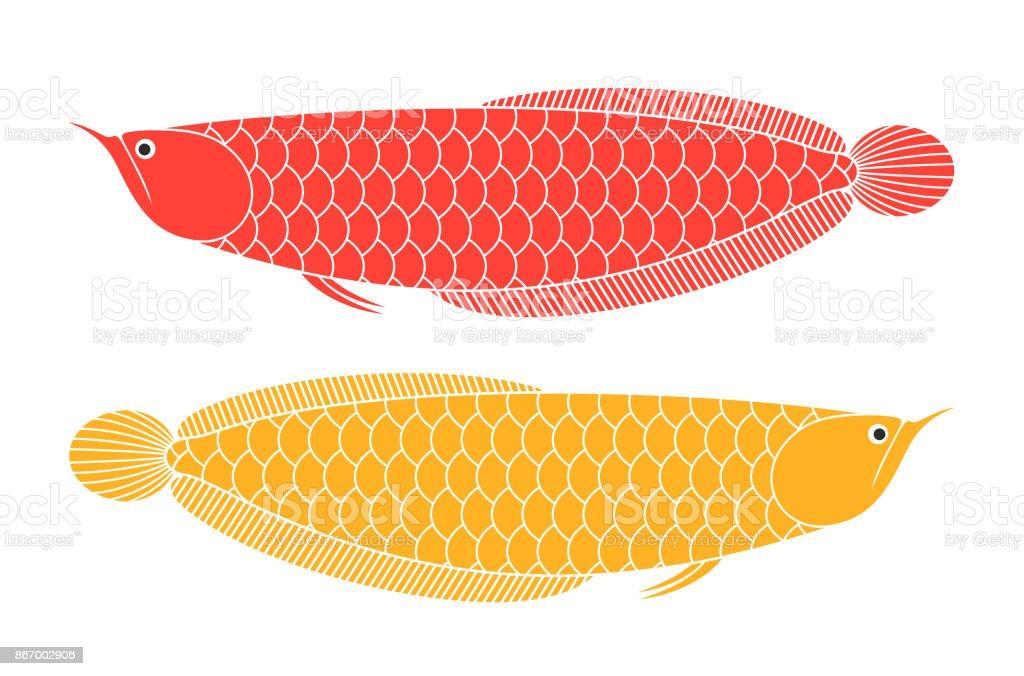 アロワナ龍魚 - アジア大陸のベ...