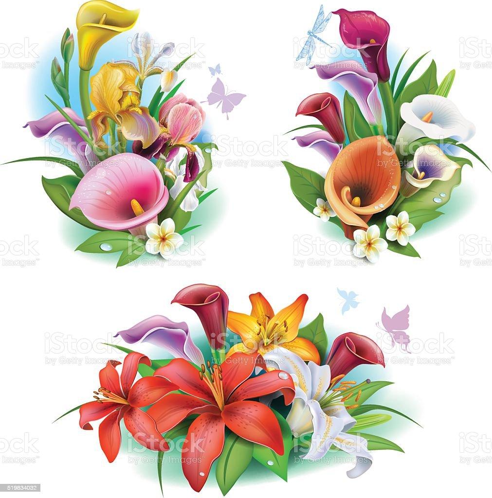 Arrangement From Tropical Flowers Stock Illustration ...
