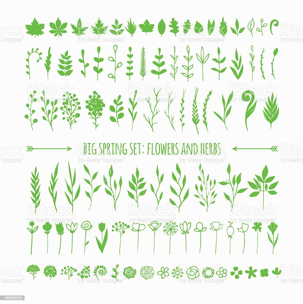 Art of different green floral designs vector art illustration