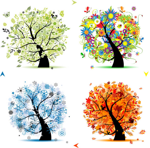 art trees collection for your design, four seasons - four seasons stock illustrations