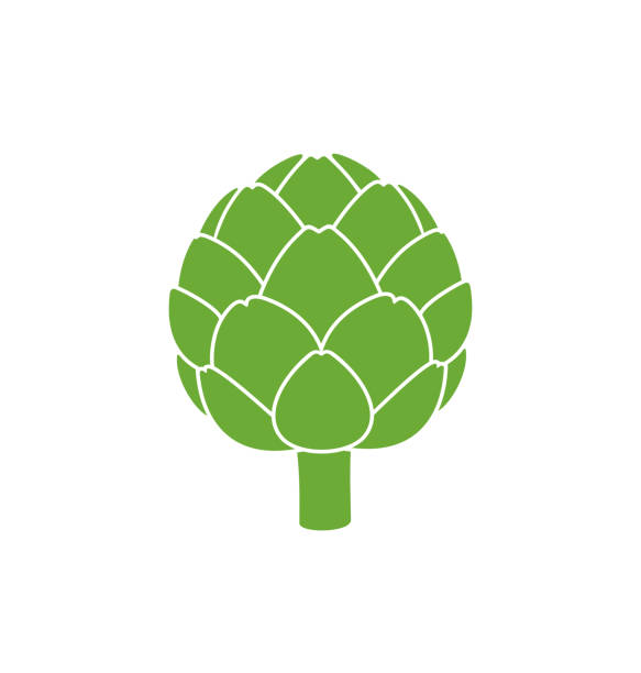 Artichoke logo.  Isolated artichoke on white background EPS 10. Vector illustration artichoke stock illustrations
