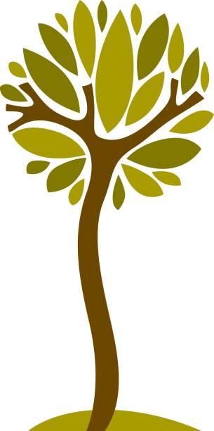 Símbolo natural estilizada artística, Ilustración de árbol creativo. Puede ser utilizado como concepto de conservación del medio ambiente y ecología. - ilustración de arte vectorial