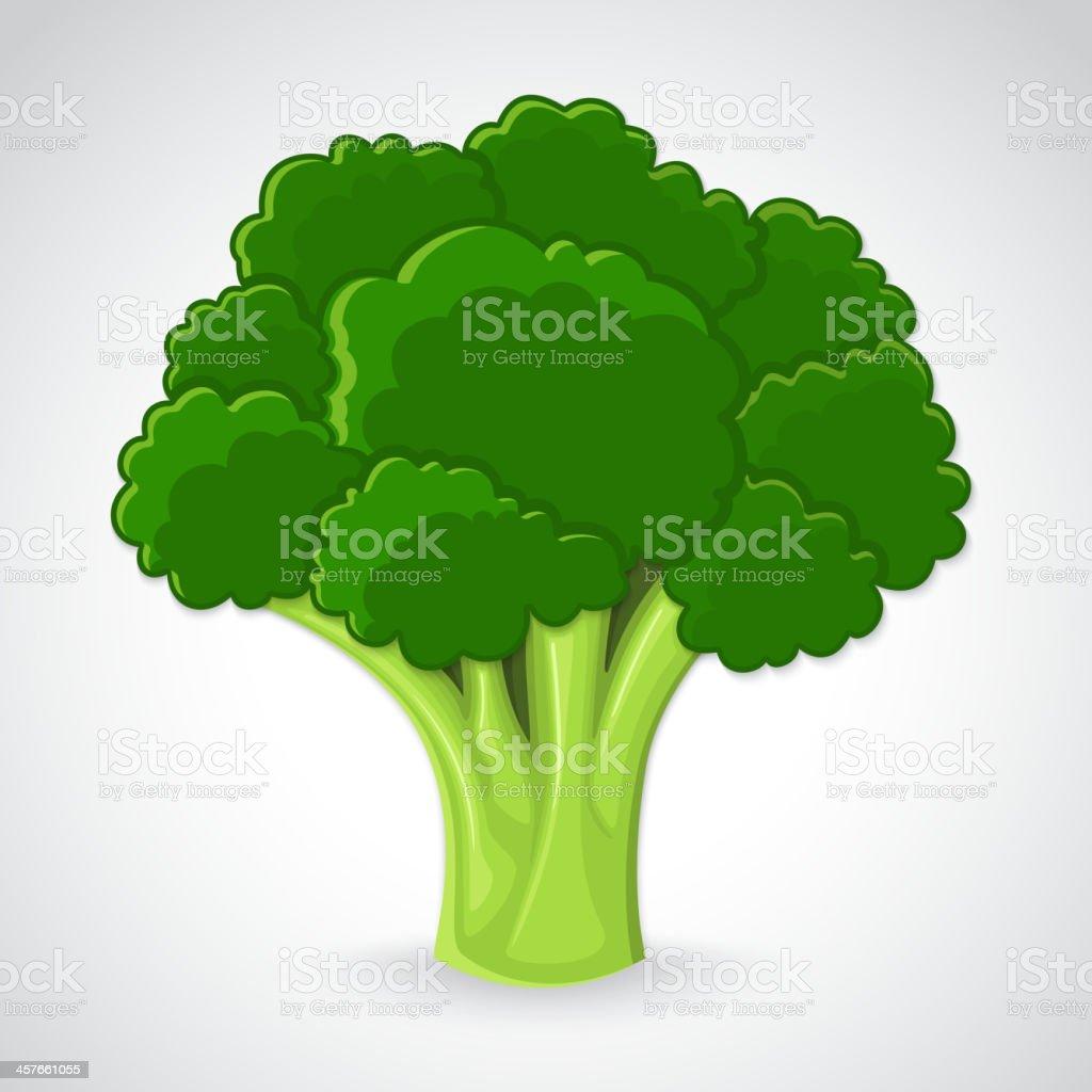 Artistic vector broccoli royalty-free stock vector art