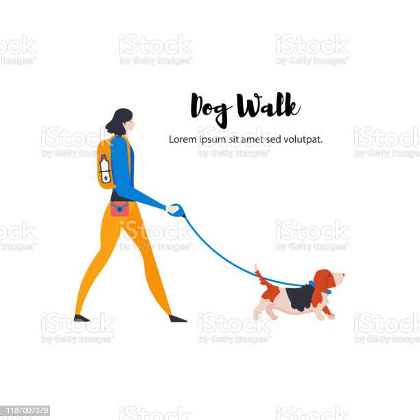 Artoon style icons of basset hound and personal dogwalker with text vector id1187007279?b=1&k=6&m=1187007279&s=612x612&h=vutdtwsbgahwe8c i1d8cck5y466 wsr5 qwc1lhnxy=