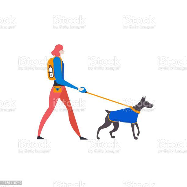 Artoon style icons of dobermann dog and personal woman dogwalker with vector id1189116249?b=1&k=6&m=1189116249&s=612x612&h=5nyseqeig zdlj6xb1xr846oof3tcdsvqrprry2oz1y=