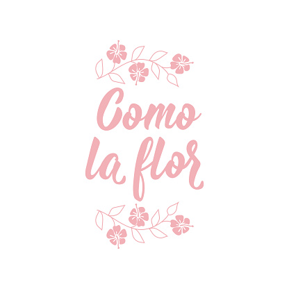 As the flower - in Spanish. Lettering. Ink illustration. Modern brush calligraphy. Como la flor.