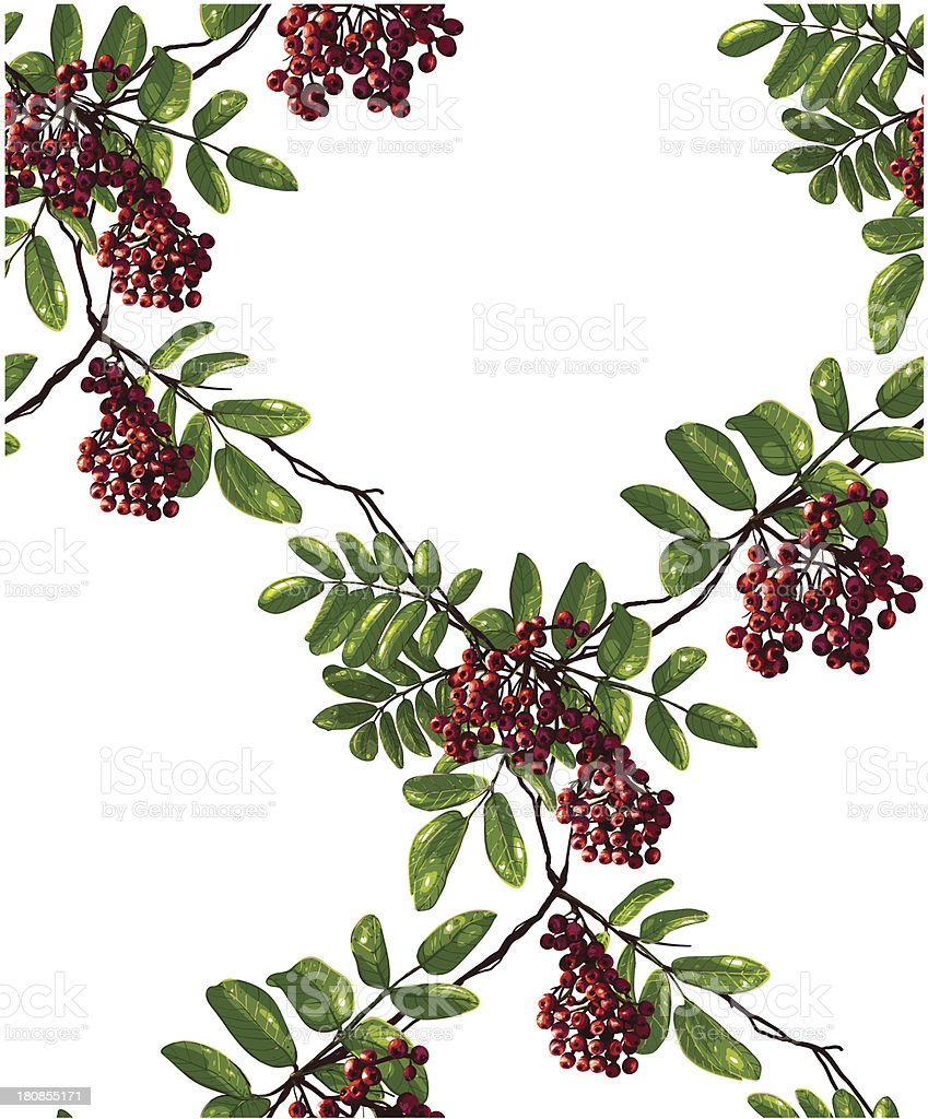 Ashberry Rhombic Branch Seamless Pattern with Berries and Leaves royalty-free ashberry rhombic branch seamless pattern with berries and leaves stock vector art & more images of autumn