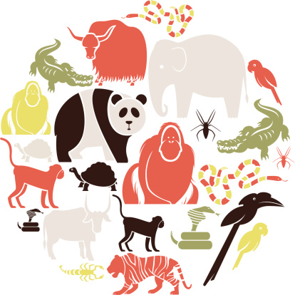 Asian Animal set.
