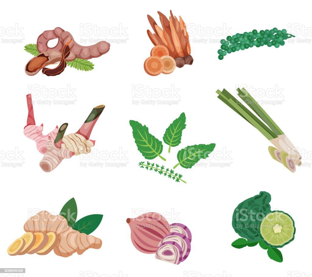 Conjunto de ingredientes de comida asiática - ilustração de arte em vetor