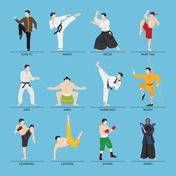 asian martial arts vector illustration - martial arts stock illustrations