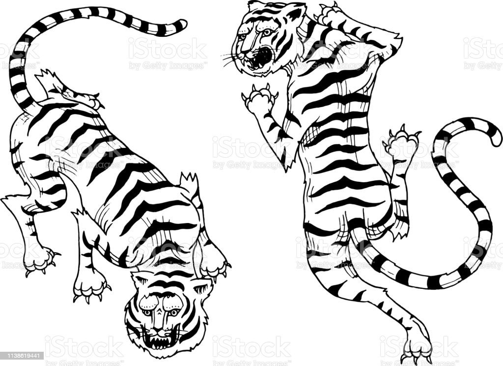 Asian tigers in vintage japanese style for symbol. Wild animals cats....