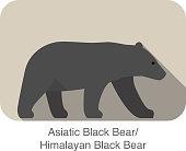 Asiatic black bear  walking side flat 3D icon design
