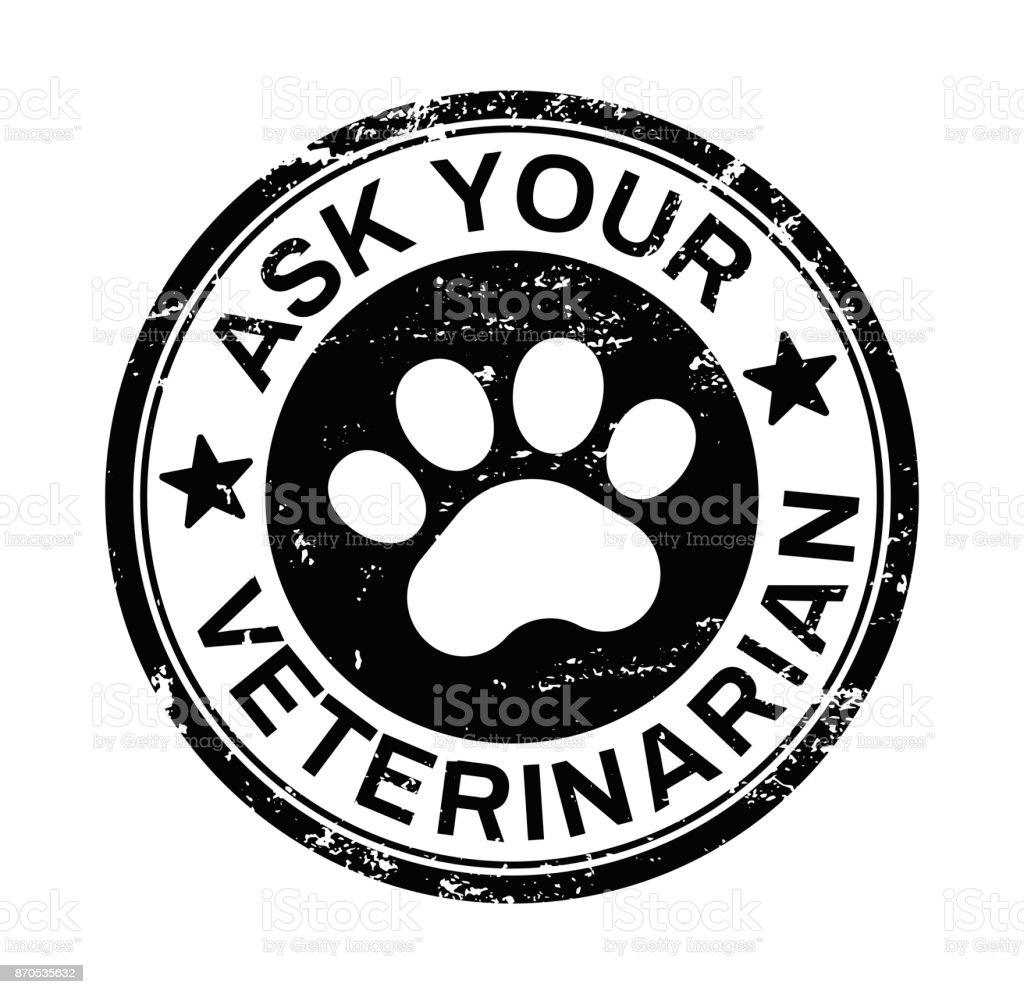 Ask your veterinarian vector art illustration