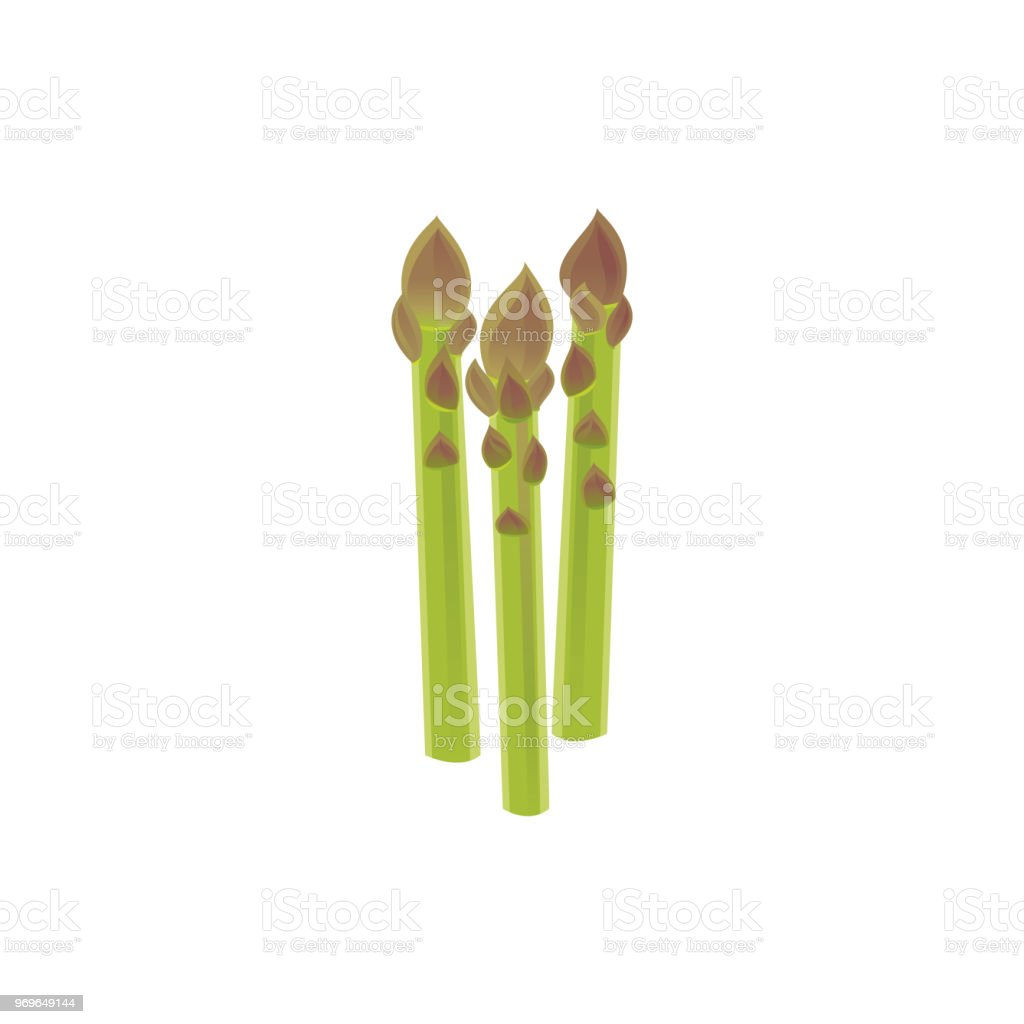 Asparagus icon vector art illustration