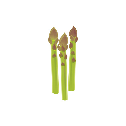 Asparagus Icon Stock Vector Art & More Images of Asparagus