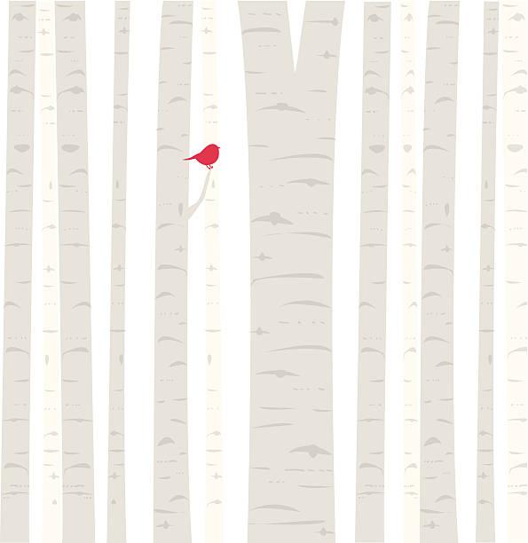 aspen birdie - winterruhe stock-grafiken, -clipart, -cartoons und -symbole