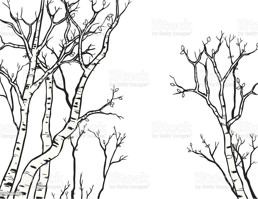 Aspen Line Art vector art illustration