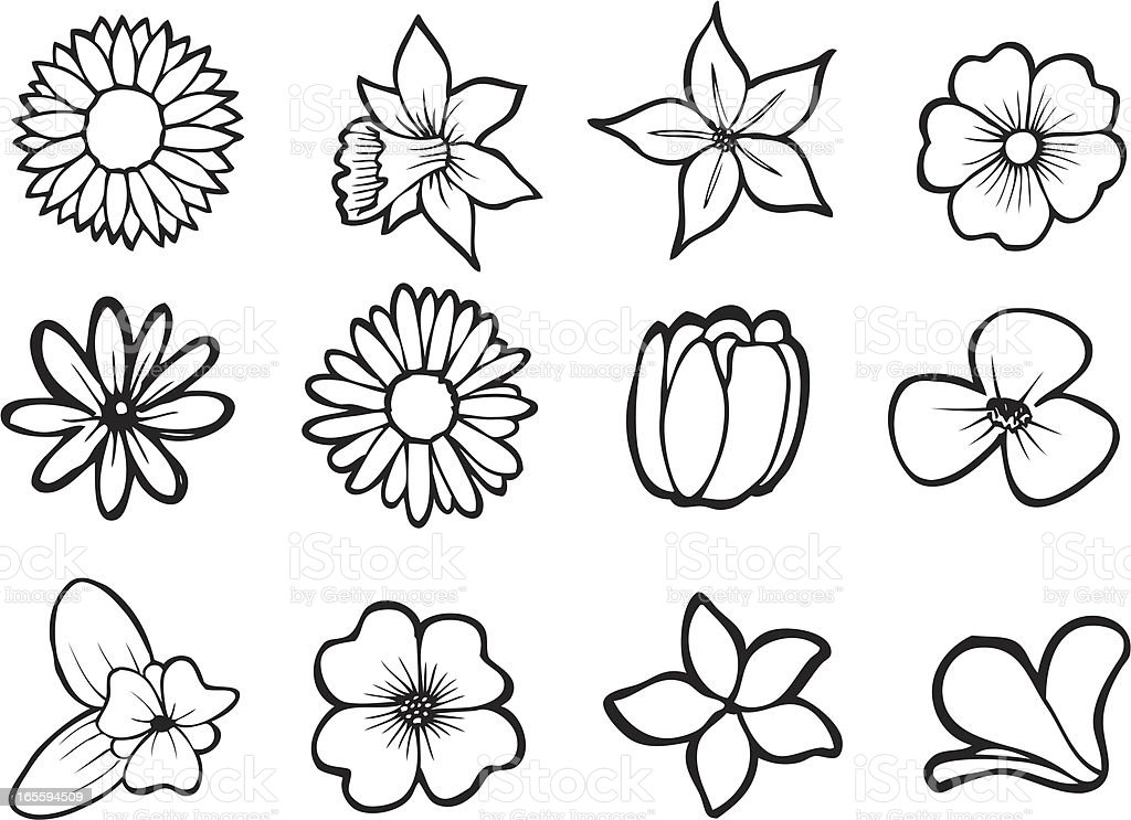 Line Art Flower Vector : Assorted flower line art stock vector more images of