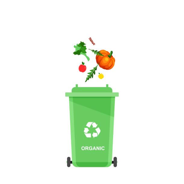 ilustrações de stock, clip art, desenhos animados e ícones de assorted organic trash in special urn. - box separate life