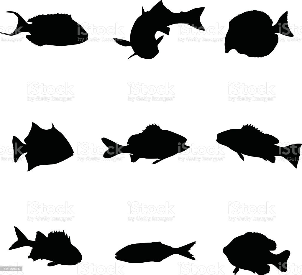 Assorted underwater sea creatures royalty-free assorted underwater sea creatures stock vector art & more images of animal