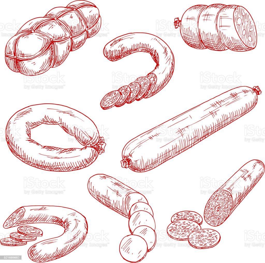 各種の新鮮なお肉ソーセージレッドのスケッチアイコン ベクターアートイラスト