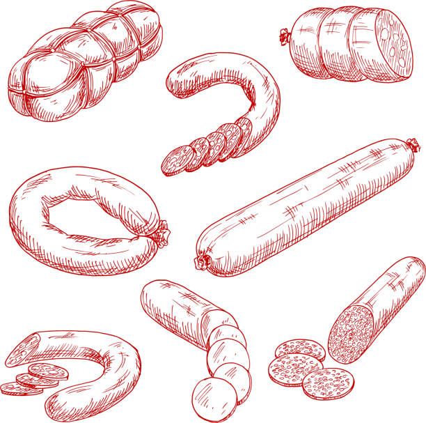assortment of fresh meat sausages red sketch icons - delis stock illustrations
