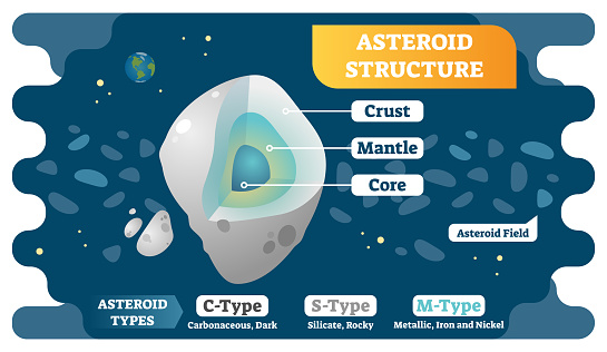 Asteroid Structure Cross Section And Asteroid Types Vector Illustration Diagram Stock Illustration - Download Image Now