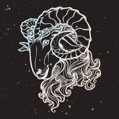 Astrological Taurus isolated on starry sky background.