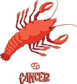 Astrological zodiac sign Cancer. Isolated vector illustration on white background.