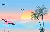 At sunset flamingo on lake scene