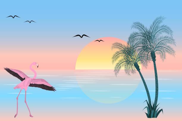 At sunset flamingo on lake scene Flamingo at sunset on lake scene. Vector illustration bird clipart stock illustrations