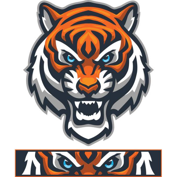 Athletic Tiger mascot And aggressive athletic Tiger head. tiger stock illustrations