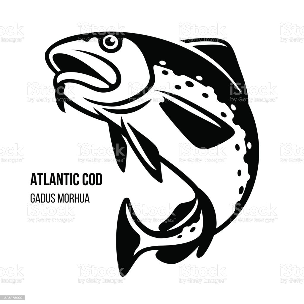 Atlantic Cod fish vector illustration Atlantic Cod fish. Gadus Morhua. Black outline vector illustration Animal stock vector