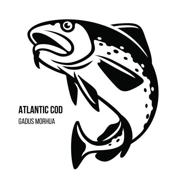 ilustrações de stock, clip art, desenhos animados e ícones de atlantic cod fish vector illustration - aquacultura