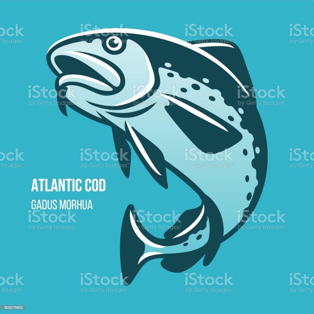Atlantic Cod fish vector illustration vector art illustration