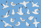Vector shapes of flying seagulls