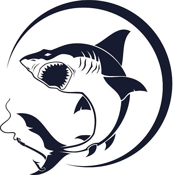 offensives shark - haifischköder stock-grafiken, -clipart, -cartoons und -symbole