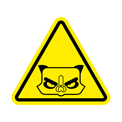 Attention Grumpy Cat. Caution Angry pet. Yellow triangle road sign