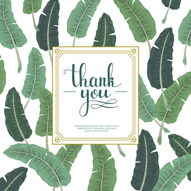 attractive thank you card design vector art illustration