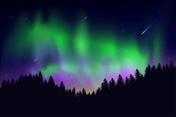 illustrazioni stock, clip art, cartoni animati e icone di tendenza di aurora that happened on the sky at night with the stars of the sky - fiordi