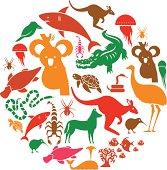 Australasian Animal Icon Set