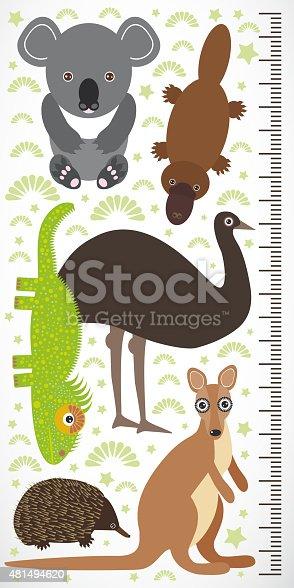Animals Australia - koala kangaroo lizard platypus echidna emu. Children height meter wall sticker Vector