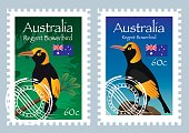 Vector Australia Postage (Regent Bowerbird )