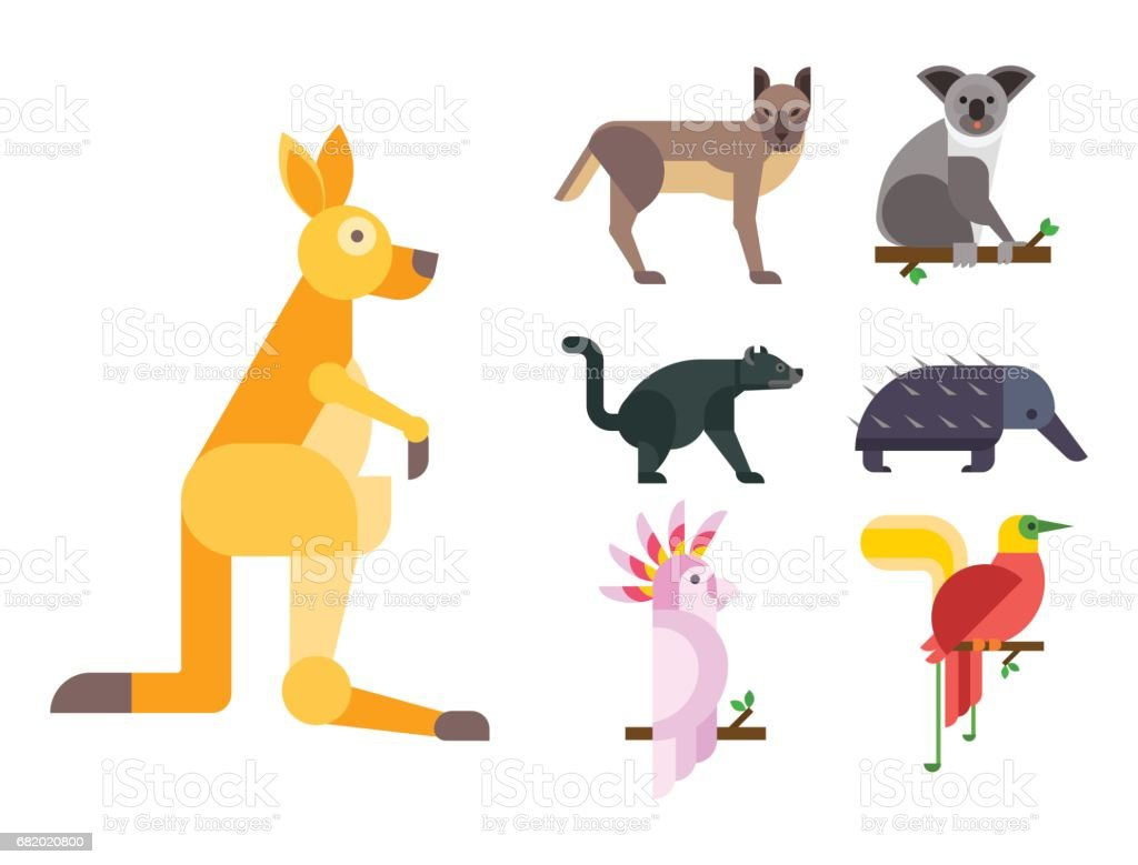 Australia wild animals cartoon popular nature characters flat style and australian mammal aussie native forest collection vector illustration vector art illustration