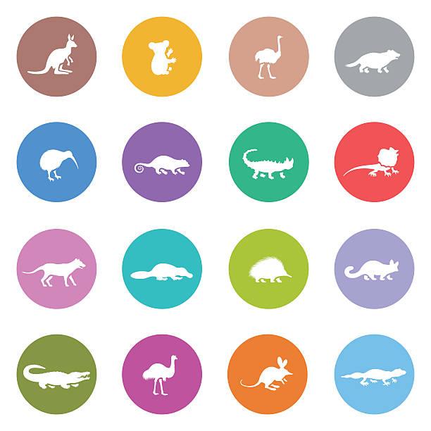 bildbanksillustrationer, clip art samt tecknat material och ikoner med australian animal icon set - platypus
